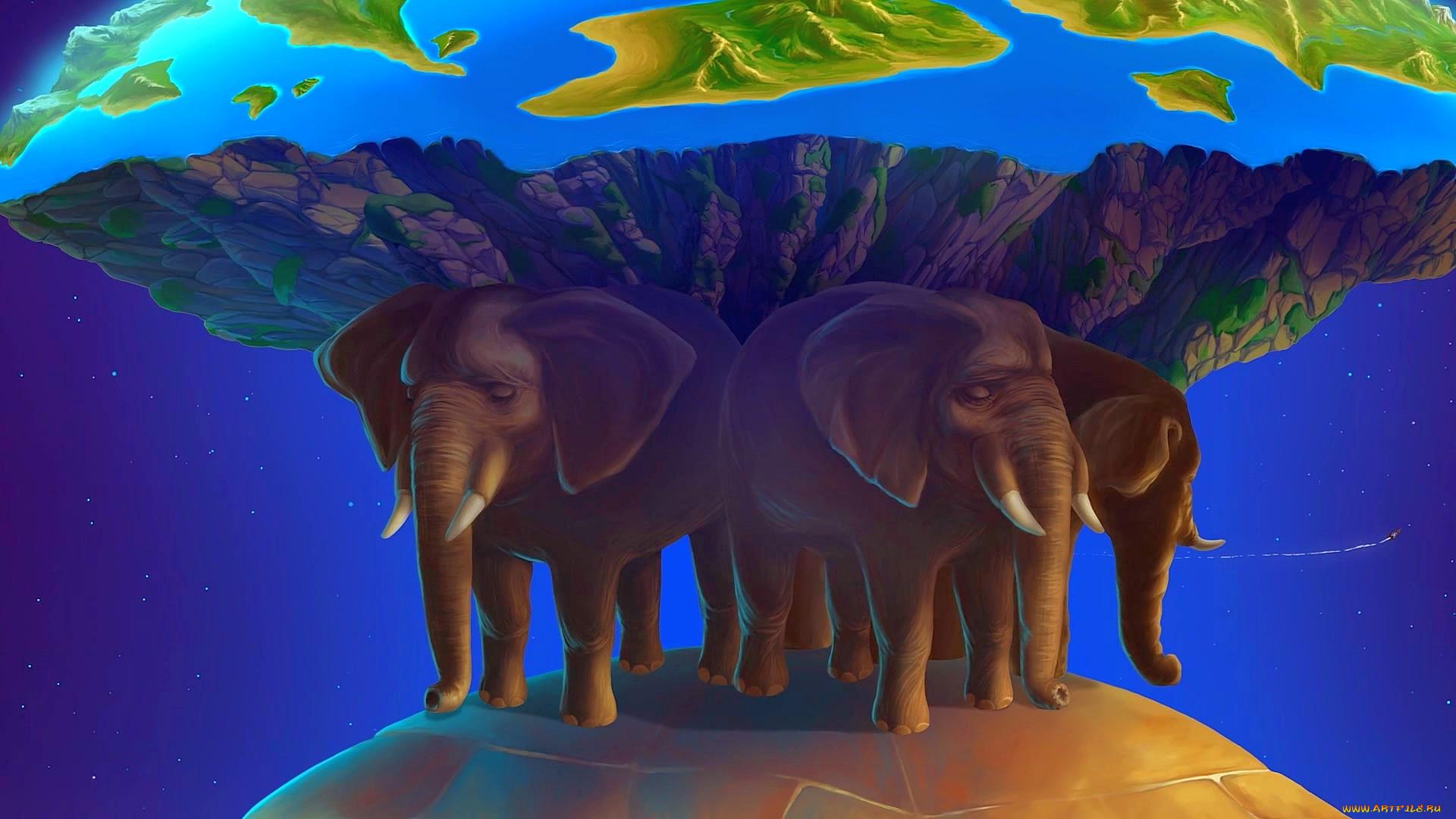 плоская земля картинки со слонами карта дорохово